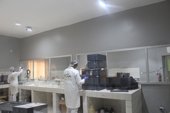 Mali : Analyses micro-biologique: Prolabs Microbio Consulting s'installe à Daoudabougou